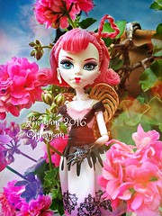 (Linayum) Tags: cupid cupido cacupid mh monsterhigh monster mattel dolls muecas toys juguete pink flowers flores gitanilla linayum
