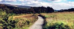 Teesdale Path (Jamie  Sproates) Tags: wwwjamiesproatescom high force river tees teesdale panorama hdr canon 5d mk3 mkiii path grass