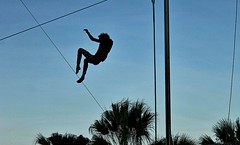 S&R #12 (g*treefrog) Tags: trapeze flying aerial falling