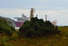 Ceona Amazon (Zak355) Tags: ceonaamazon ship boat vessel riverclyde shipping uniqueversatiledeepwaterfielddevelopmentvessel supply offshore subsea workboat rothesay isleofbute scotland scottish