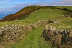 Walled path (frankshepherd2) Tags: hills trek walk trail morr scenery landscape exmoor devon