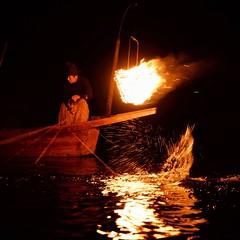 -- (m-miki) Tags: nikon d610 japan kyoto      cormorant fishing  summer