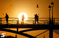 Seflies (A.G. Photographe) Tags: anto antoxiii xiii ag agphotographe paris parisien parisian france french français europe capitale nikon d810 sigma 150600 sunset goldenhour heuredorée ombre shadow contrejour pontdesarts