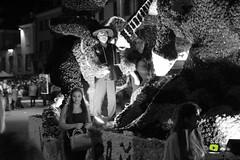 Corso-Fleuri-Selestat-2016-83.jpg (valdu67photographie) Tags: alsace corsofleuri selestat 2016 nuit international basrhin expositions fanabriques fanabriques2016 lego rosheim visite