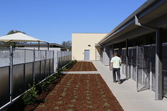 Placer County Animal Services Center (Dreyfuss + Blackford Architecture) Tags: placer county california animal services center shelter dog cat horse small mammals livestock north auburn dreyfuss blackford architects architecture design medical community unger construction arts 2014 2015 outdoor 2016 metal canine feline