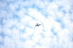 natures beauty! (Dotsy McCurly) Tags: walk around neighborhood nature beauty nikon d750 nj sky clouds blue fluffy airplane