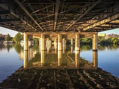 1st Street Bridge (Scriblerus) Tags: austin firststreetbridge 1ststreetbridge coloradoriver reflection bridge pillars