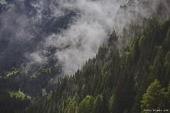 Valle del Caffaro dopo l'acquazzone (Matteo Rinaldi.it) Tags: montagne trekking valledelcaffaro gaver stampa
