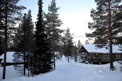 Saariselkä (fede_gen88) Tags: saariselkä suomi lapland lappi finland europe snow cottage woods nature trees nikon d5100