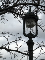 Lampadaire (Nefertyna) Tags: street canada tree fall lamp automne qubec arbre lampadaire clairage plaine dabraham