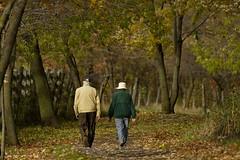 Faire route ensemble (Luc Marc) Tags: life wood autumn nature forest automne couple time quebec walk trail together qubec aged temps ensemble sentier marche fort bois vieux vie