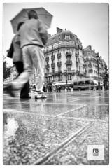 Right feet down (Felice Bassani) Tags: street bw paris france feet rain umbrella canon couple strada crossing pavement blurred bn 5d pioggia francia piedi ombrello coppia parigi mossa marciapiede attraversare
