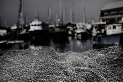 Fishing Net (Yayo_M (Avi Morag)) Tags: 7d 241054l avimorag