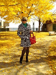 Alert! This is a Re-post! (Laurette Victoria) Tags: autumn fall leaves sunglasses fashion wisconsin fallcolors tights jacket purse milwaukee laurette laurettevictoria