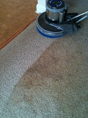 Charlotte Carpet Cleaning - CitruSolution - 70...