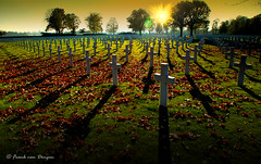 War Cemetry Margraten, Holland (mrtungsten62 - on the road #) Tags: cemetry usa reflection backlight europe wwii crosses battle american jews woii warcemetry