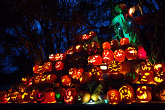 Happy Halloween () Tags: light canada halloween night twilight bc nightshot pumpkins delta pumpkincarving bluehour ladner happyhalloween m43 mirrorless westhamislandherbfarm jackolanterns microfourthirds lumix20mmf17 olympusomdem5