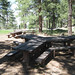 Tables outside the Wood Shelter