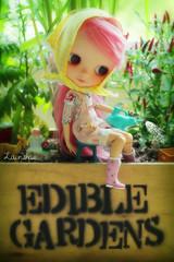 we <3 edible gardens!