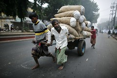 You're okay son !!!! (N A Y E E M) Tags: street morning winter cart bangladesh chittagong waistlevel norahmedroad thelagari