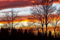 Sunset lines (Karmen Smolnikar) Tags: trees sunset sky lines clouds line slovenija sloevnia