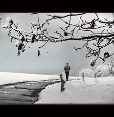 January (h.koppdelaney) Tags: life winter snow man art digital photoshop solitude view symbol walk january picture philosophy harmony mind awareness metaphor enlightenment stillness psyche symbolism psychology archetype conscious koppdelaney creativephotocafe