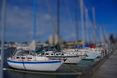 Sailing Boats (samiKoo) Tags: ocean blue red sea summer sky sun white pier boat sailing toycamera australia melbourne williamstown sail mast sailingboat tiltandshift