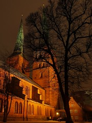 Lbeck Cathedral (Matthias Harbers) Tags: schnee winter snow tree church water night photoshop canon germany deutschland evening wasser cathedral dom kirche powershot illuminated labs dxo lbeck baum topaz g11 mhlenteich angestrahlt lbeckerdom lbeckcathedral domzulbeck eswigholstein