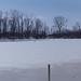 frozen black swamp pano
