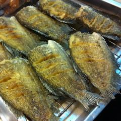 ปลาสลิดทอด | Fried Dried Gourami @ อาหารไทยคุณยาย ชัยนาท | Khun Yai Chainat