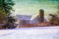 Hidden (DaraDPhotography) Tags: trees winter snow nature barn rural pennsylvania brush silo textures textured lenabemannatextures wwwdaradphotographycom pixeldustphotoart bestevercompetitiongroup creativephotocafe pdpaglorybe texturemoon2 backgroundmoon