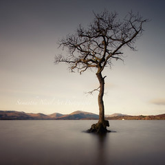 The One! (Samantha Nicol Art Photography) Tags: snow tree water square bay scotland long exposure slow hills nd loch samantha lomond nicol millarochy