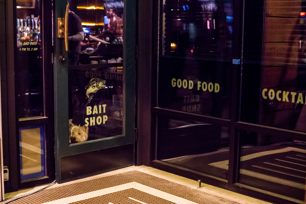 how to open a bait shop