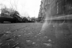 Neighbourhood Cat (nils_aksnes) Tags: blackandwhite bw glasgow pinhole ilford wppd worldwidepinholephotographyday ondu ondu135