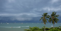 Storm coming - Pattaya bay (Tricycl) Tags: thailand pattaya palm trees tree fuji fujifilm x70 sea water beach clouds storm wind tropical leaves leaf monsoon thailande plage mer ocan palmiers bay