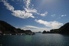 20160903-DS7_3268.jpg (d3_plus) Tags:  a05 d700 drive fish port apnea fishingport   watersports sky    nikon  flower   tamronspaf1735mmf284dildaspherical  plant touring scenery   nikon1 wideangle nature izu sea  minamiizu   skindiving japan     nikkor marinesports  tamronspaf1735mmf284   shizuoka snorkeling zoomlense tamron1735  diving underwater nikond700 superwideangle street    bloom tamronspaf1735mmf284dild  tamronspaf1735mmf284dildasphericalif
