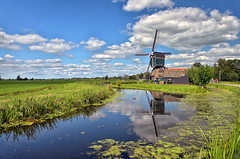 The Dutch countryside (Sizun Eye) Tags: vlist river bonrepas polder dutch countryside campagne hollandaise holland paysbas paysage rivire mill windmill molen wiatrak holandia duck canard kaczka cows krowy vaches bicycles bicyclettes rowery landscape clouds sky nuages ciel soleil sun sunny reflections reflets europedelouest europe europa westerneurope schoonhoven sizuneye sizun nikond750 d750 tamron2470mmf28 tamron 2470mm summer t lato nederland netherlands nature natuur moulin