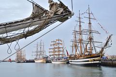 Cdiz. Regata de Grandes Veleros 2016 (Alfonso Surez) Tags: alfonsosurez alfonsosurezlagares cadiz regata grandes veleros amerigo vespucci puerto andalucia espaa