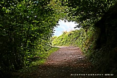 The green tunnel (_Nick Photography_) Tags: img7674 thegreentunnel hiking wood mountain hole tunnel canoneos6d prealpi