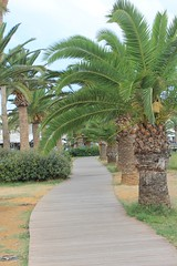 Rethymno (rikawaechter) Tags: kreta griechenland rethymno stadt museum altstadt hafen schiff palmen urlaub ausflug sehenswert sehenswrdigkeit