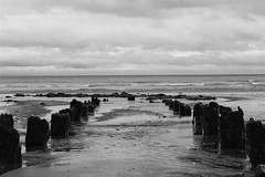 Remains. (Billy Court Photography) Tags: sea devon dawlish summer cloudy wood sand ruin black white south england