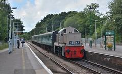D9537 at Eridge, 7/8/16 (Craig Stretten's Photography) Tags: d9537 ernest hydraulic eridge spavalleyrailway spvr
