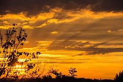 Alba (baxbax2504) Tags: 2016 alba sunrise orange nikonflickraward