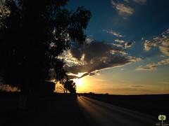Coucher de soleil sur Maghnia (Ath Salem) Tags: tlemcen algrie mars ben mhidi portsay moscarda frontire maroc coucher de soleil sunset hammam boughrara maghnia drapeau flag beni snassen dcouverte tourisme maghreb littoral cte
