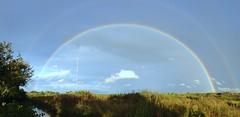 Somewhere over the rainbow (Elbmaedchen) Tags: regenbogen rainbow lichtbrechung phänomen himmel interferenzstreifen spektralfarben