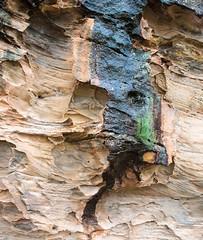 160925_Warrumbungles_5679.jpg (FranzVenhaus) Tags: trees creek countrybush plants cliffs australia mountains warrumbungles nsw water newsouthwales wilderness rocks aus