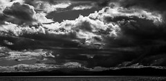 Constellation 1740 160618 (jetcitygrom) Tags: constellation park alki seattle landscape cloudscape clouds tones bw black white canon 6d elliott bay