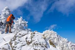Harry_30841a,,,,,,,,,,,,,,,,,,,,,,,,,Hehuan Mountain,Taroko National Park,Snow,Winter (HarryTaiwan) Tags:                         hehuanmountain tarokonationalpark snow winter mountain     harryhuang   taiwan nikon d800 hgf78354ms35hinetnet adobergb