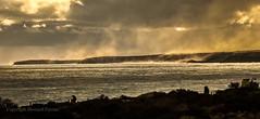 Steaming (Howard Ferrier) Tags: portcampbellnp victoria southwest oceania australia princetown au