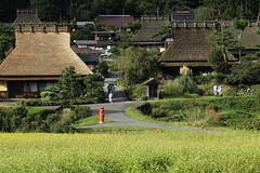 The local village in Kyoto (Teruhide Tomori) Tags:      rice     tradition architecture house construction building miyama nantan countryside  ricefield autumn nature mountain green landscape